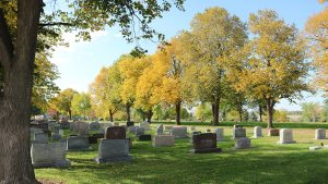Walking Tour: Trees and Linn Grove Cemetery @ Linn Grove Cemetery